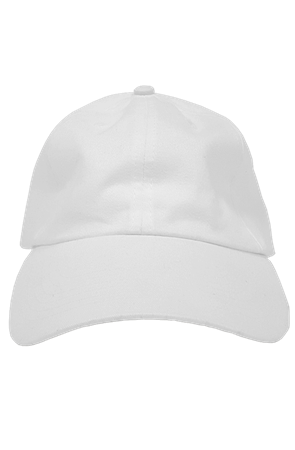 mens hats premium dad hat